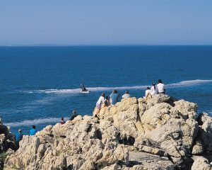 Südafrika: Walbeobachtung am Kap - zu Land, zu Wasser und aus der Luft