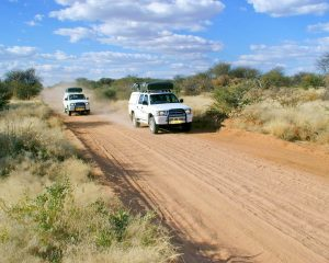 Mit dem Mietwagen durch Botswana – Praktische Tipps für die Selbstfahrertour