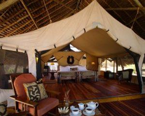 Tansania: Neue Flugsafari mit Badeaufenthalt in den Süden von Tansania - Selous und Ruaha Nationalpark