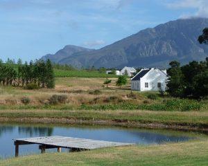 Wein in Südafrika – Reisetipp von Iwanowski's Reisen