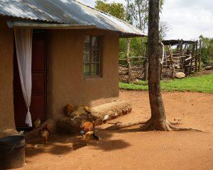 """Kenia: Mit-Reiseprojekt """"As Friends to Kenya"""" – nachhaltiges Reisen"""