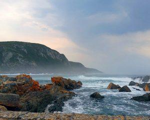 Die Garden Route in Südafrika – ein Garten Eden jenseits der Blumenmeere