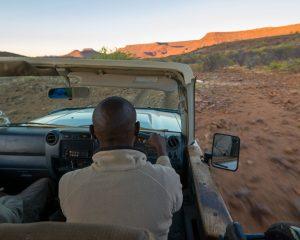 Auf den Spuren der letzten Spitzmaulnashörner – Rhino Tracking in Namibia