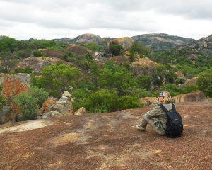 Safari durch drei Länder im Südlichen Afrika – Südafrika, Simbabwe und Botswana