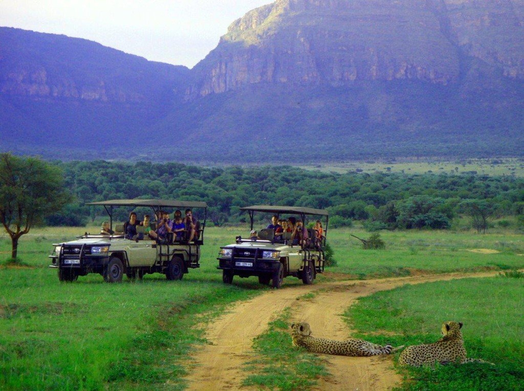 Südafrika Entabeni Pirschfahrt