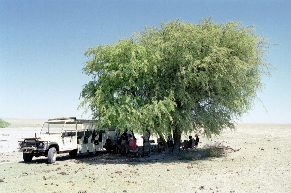 Botswana Bushways Safari Maun Livingstone Kalahari Mittagsrast Iwanowskis Reisen - afrika.de