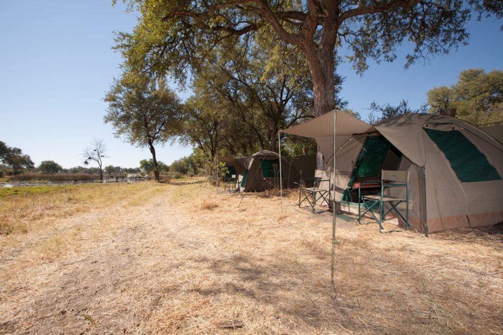 Botswana Bushways Safaris Zeltunterkunft Moremi Iwanowskis Reisen - afrika.de