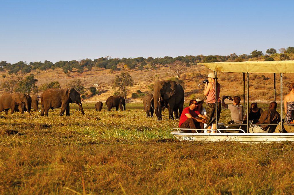 Botswana Chobe Nationalpark Bootsfahrt Iwanowskis Reisen - afrika.de