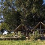 Botswana Okavango Delta Duba Plains Iwanowskis Reisen - afrika.de