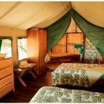 Botswana Kalahari Edos Camp Zeltunterkunft Iwanowskis Reisen - afrika.de