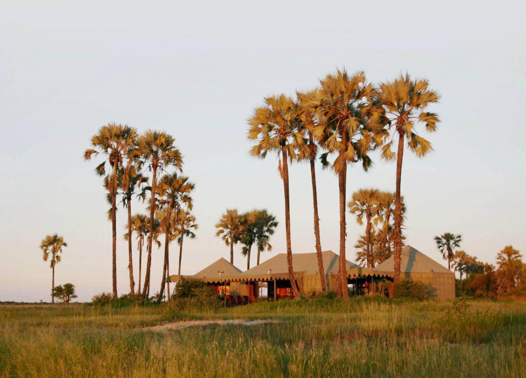 Botswana Kalahari Jack's Camp Iwanowskis Reisen - afrika.de
