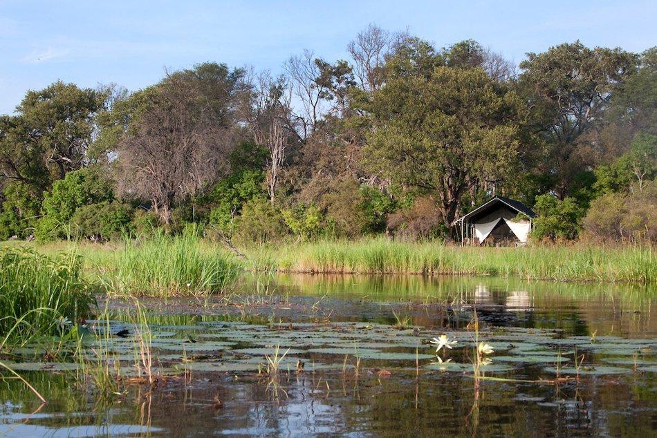 Botswana Khwai Konzession Machaba Camp Zeltunterkunft Iwanowskis Reisen - afrika.de