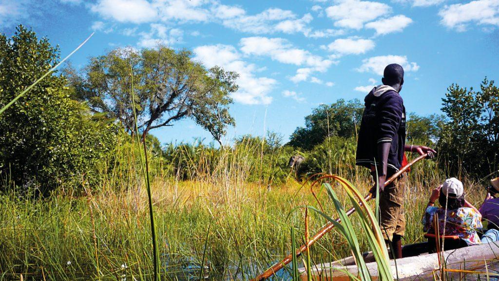 Botswana Okavango Delta Einbaum Mokoro Iwanowskis Reisen - afrika.de