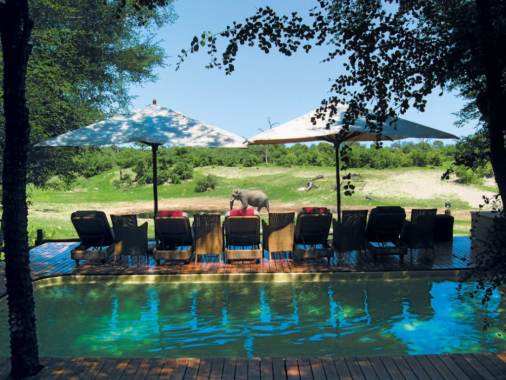 Botswana Chobe National Park Savute Safari Lodge Pool Iwanowskis Reisen - afrika.de