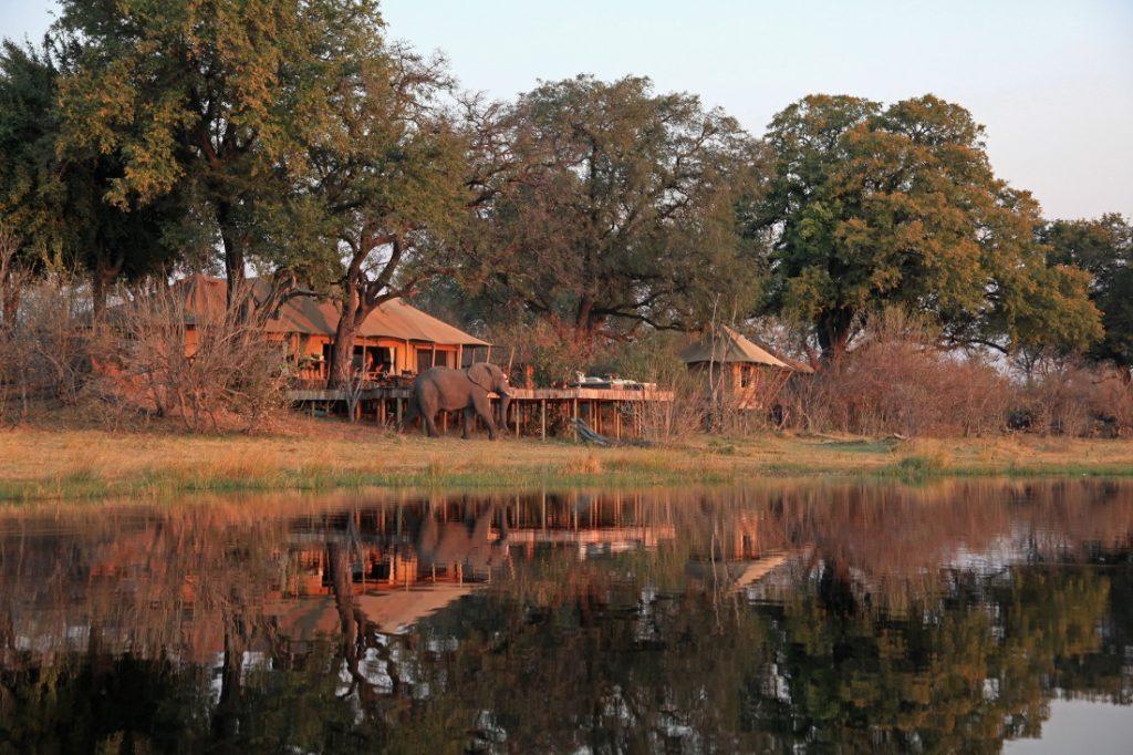 Botswana Linyanti Selinda Reservat Zarafa Camp Zeltunterkunft Iwanowskis Reisen - afrika.de