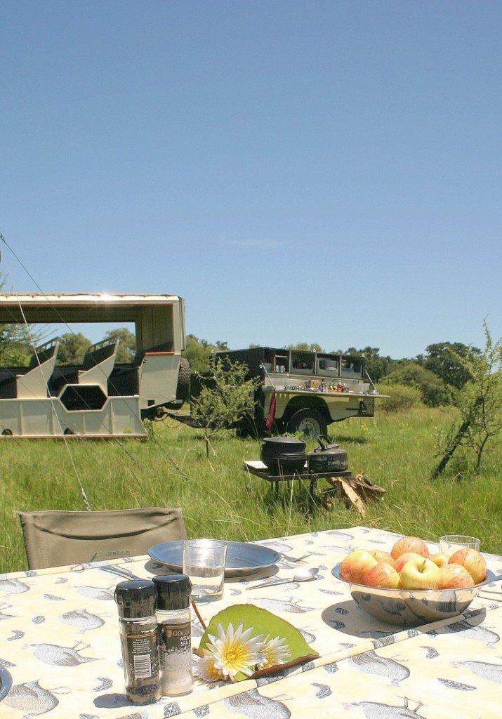 Botswana Bushways The Leopard Safari Safaritruck Iwanowski's Reisen - afrka.de