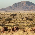 Flugsafari Namibia