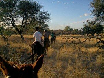 Etusis Lodge Namibia Reiten