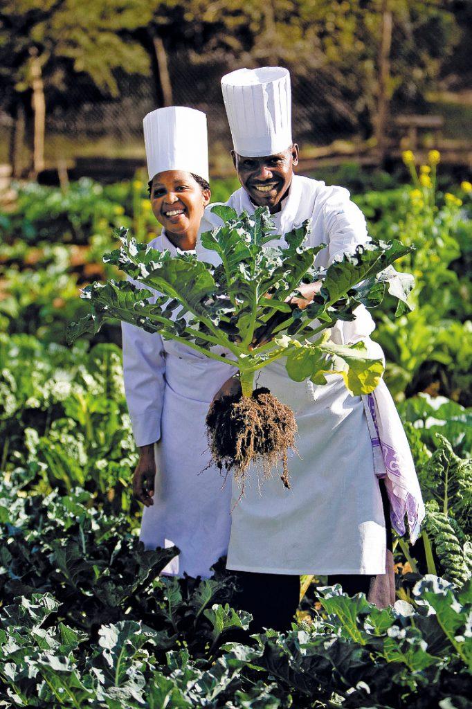 Kenia Mara Sopa Lodge Köche im Gemüsegarten Iwanowskis Reisen - afrika.de