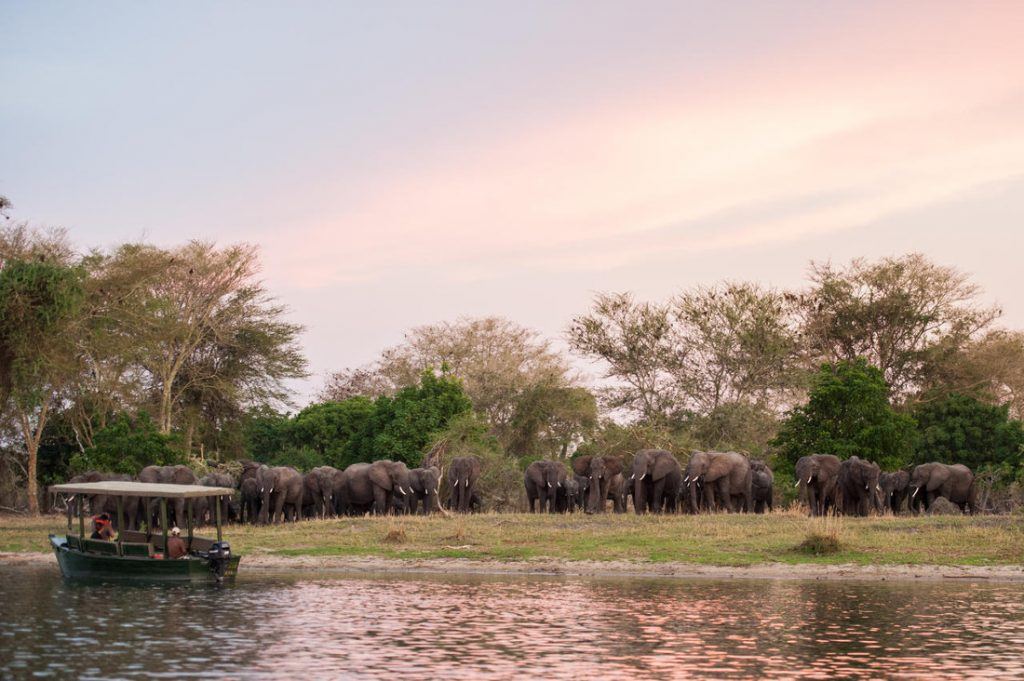 Malawi Liwonde National Park Mvuu Camp Iwanowskis Reisen - afrika.de