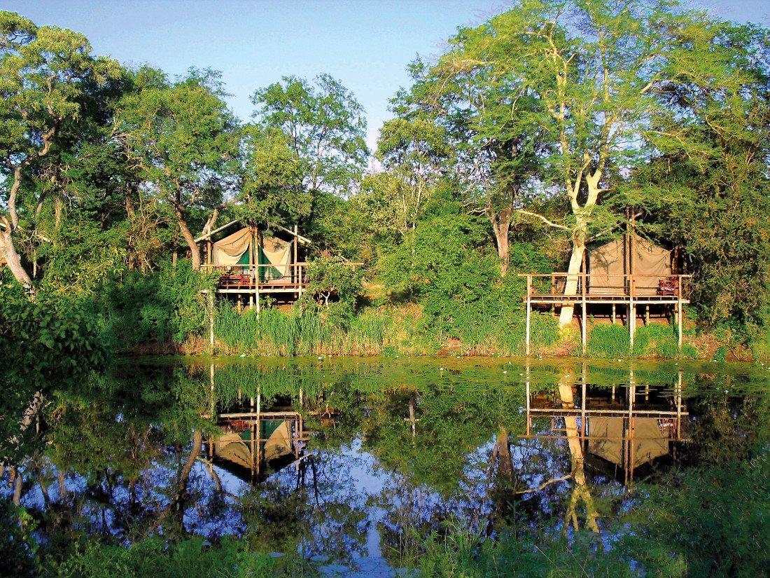 Mosambik Great Limpopo Transfrontier Park Machampane Wilderness Camp Iwanowskis Reisen - afrika.de