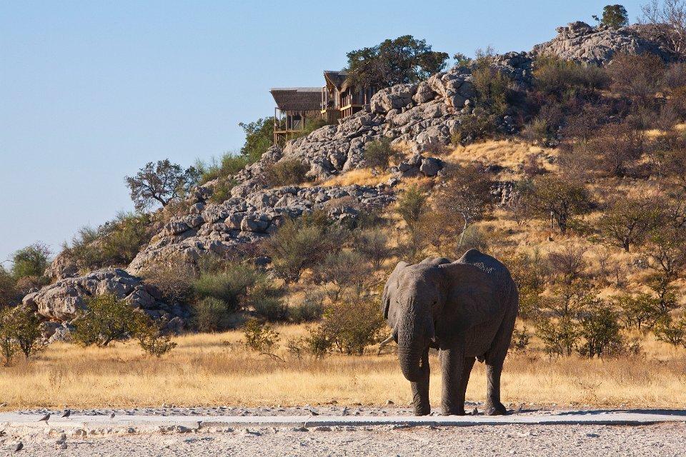 Namibia Etosha Nationalpark Dolomite Camp Iwanowskis Reisen - afrika.de