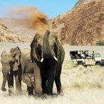 Südafrika Damaraland Doro Nawas Pirschfahrt Iwanowskis Reisen - afrika.de