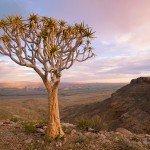 Namibia - selbst fahren und wandern