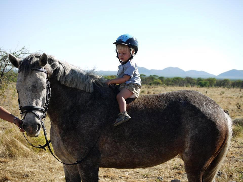 Namibia Otjiwarongo Kambaku Safari Lodge Kinder Reisen 1 Iwanowskis Reisen - afrika.de