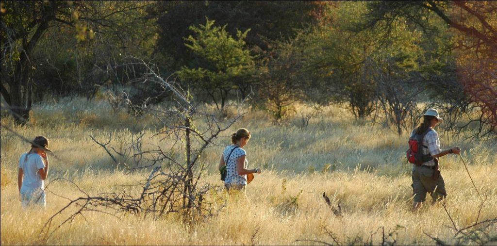 Namibia Otavi Mundulea Bush Camp Wanderung Iwanowskis Reisen - afrika.de