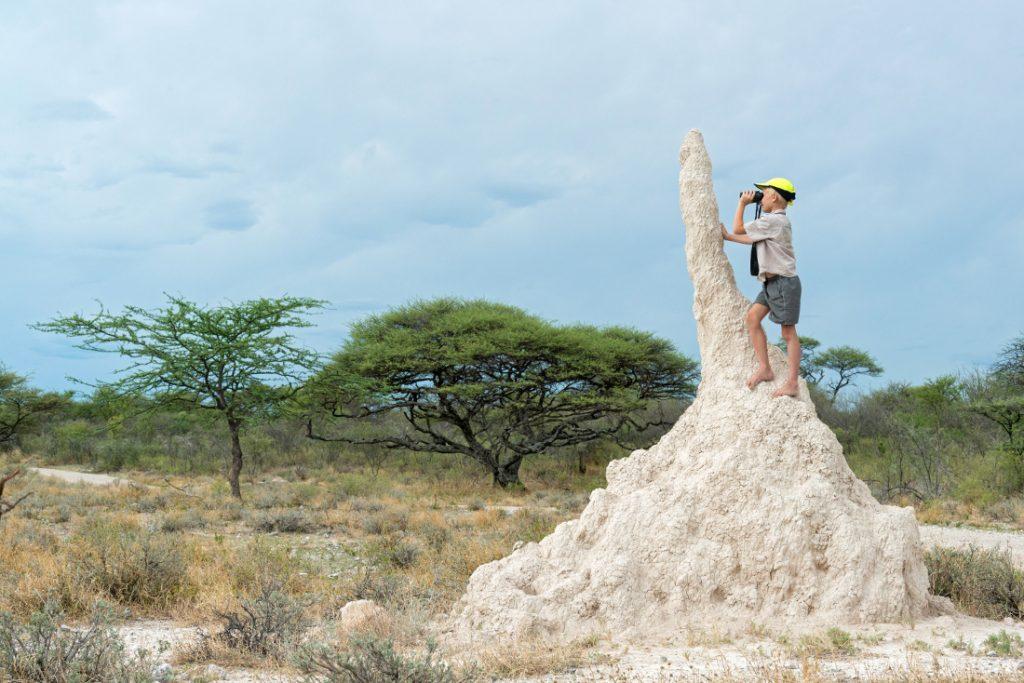 Namibia Etosha National Park Onguma Bush Camp Kinder Iwanowskis Reisen - afrika.de