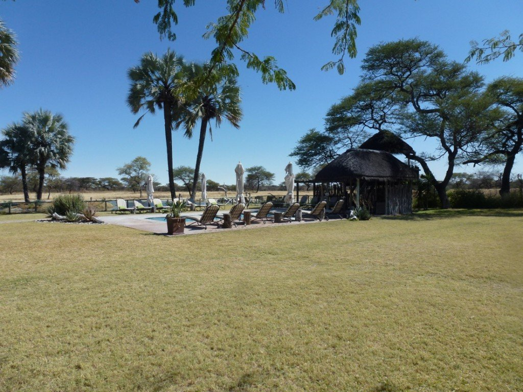 Namibia Etosha Onguma Bush Camp Pool Iwanowskis Reisen - afrika.de