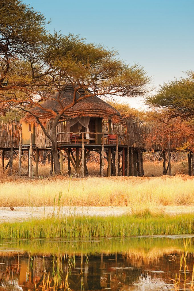 Namibia Etosha National Park Onguma Tree Top Camp Iwanowskis Reisen - afrika.de