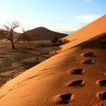 Namibia und Botswana: Desert & Delta