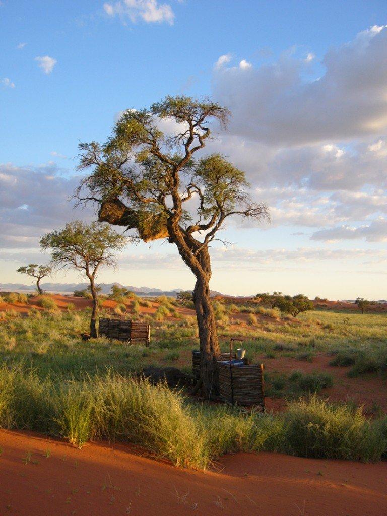 Namibia NamibRand Nature Reserve Tok Tokkie Trail Buschdusche Iwanowskis Reisen - afrika.de
