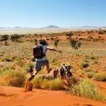 Namibia NamibRand Nature Reserver Tok Tokkie Trail Dünensprung Iwanowskis Reisen - afrika.de