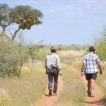 Namibia Trans Kalahari Walk Wanderung Red Dunes Lodge Dunes Camp Iwanowskis Reisen - afrika.de