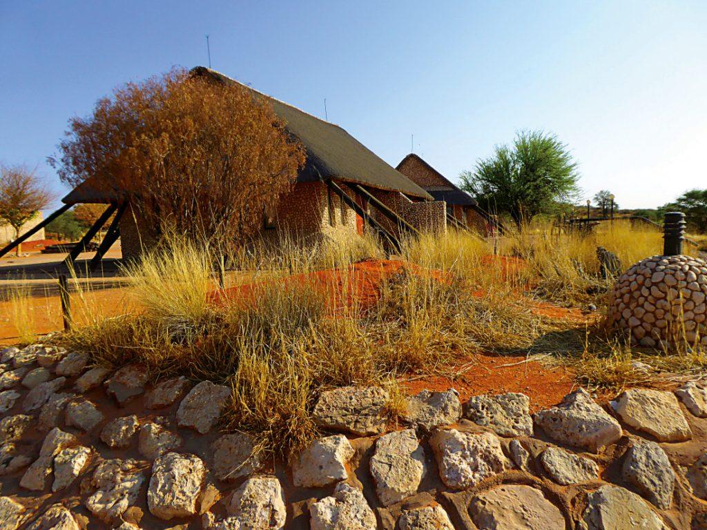 Südafrika Kgalagadi Transfrontier Park Twee Rivieren Iwanowskis Reisen - afrika.de