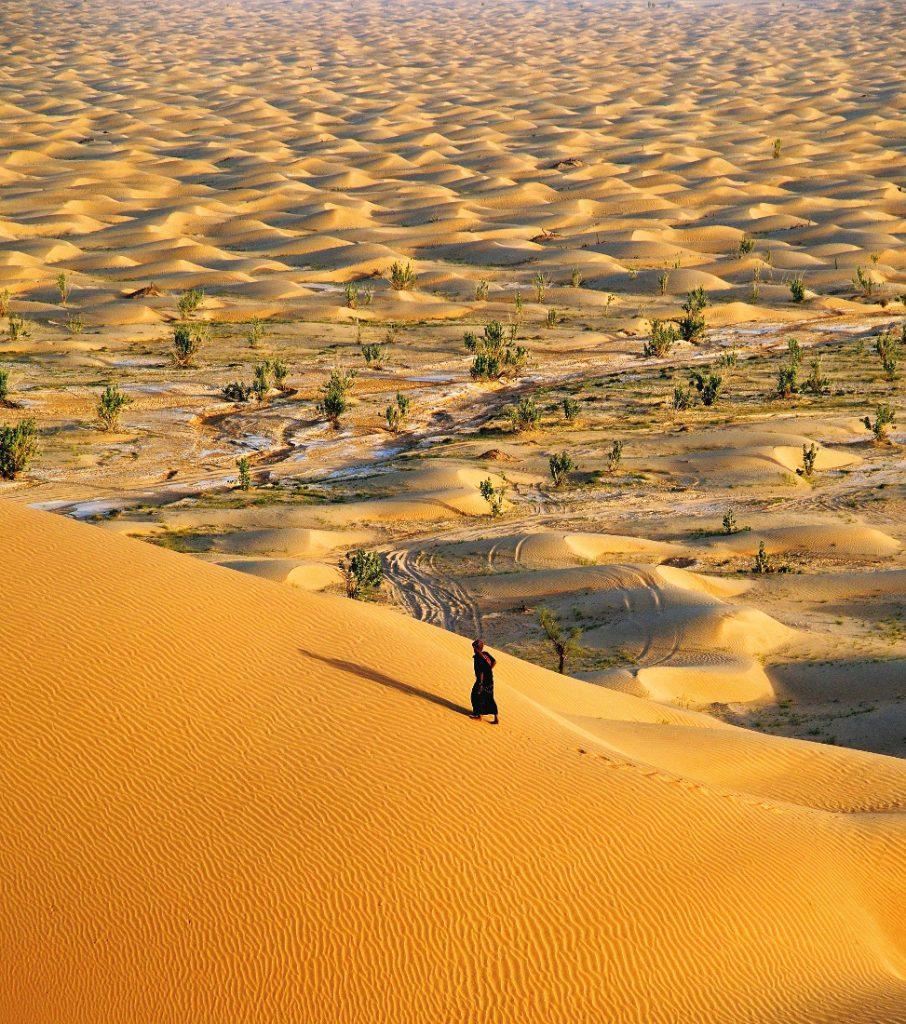 Oman Rundreise Gruppenreise Wüste Wahiba Sands Iwanowskis Reisen - afrika.de