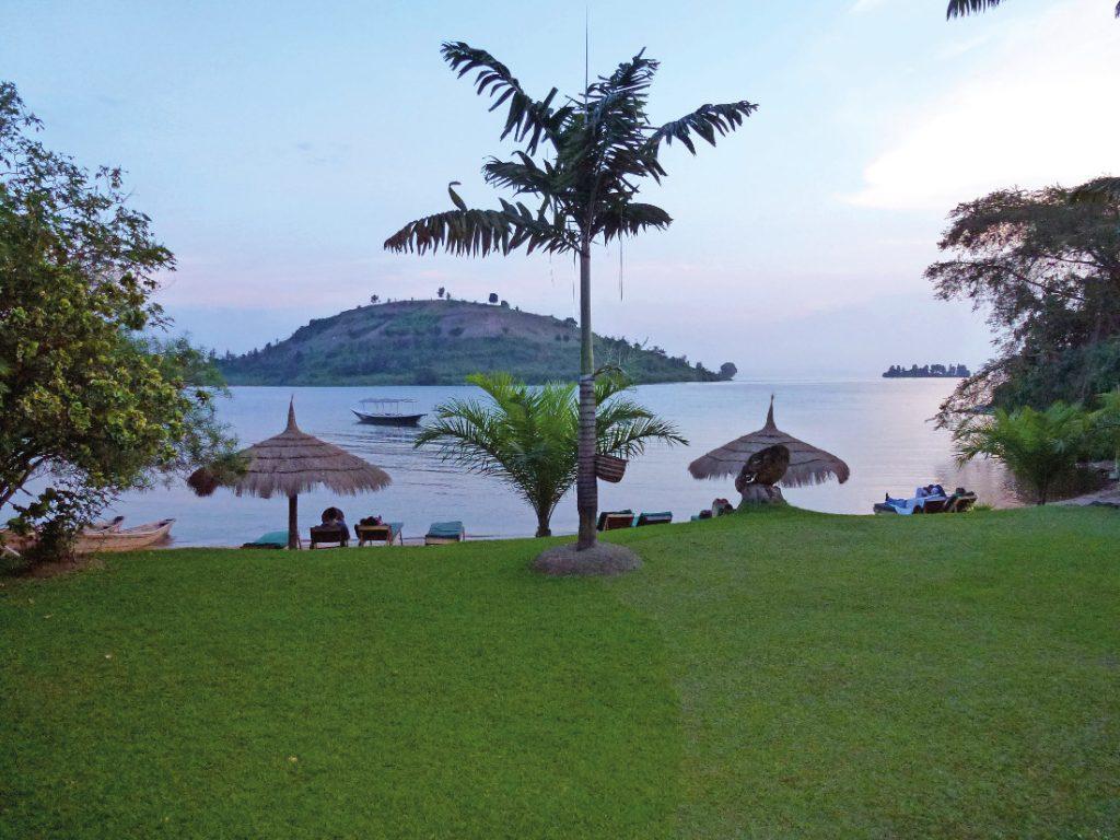 Ruanda Safari Lake Kivu Cormoran Lodge Iwanowskis Reisen - afrika.de