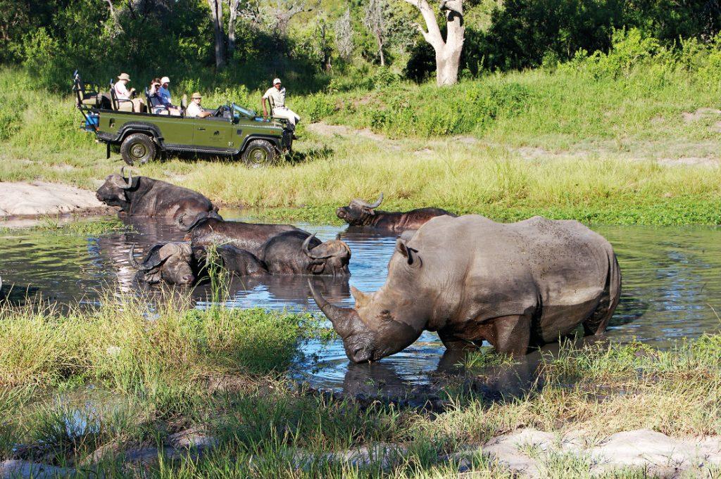 Südafrika Sabi Sands Elephant Plains Game Lodge Pirschfahrt Iwanowskis Reisen - afrika.de