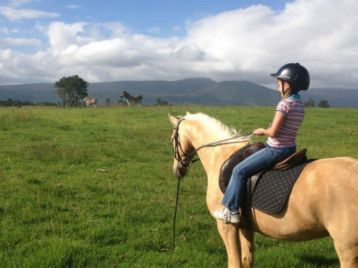 Südafrika Hog Hollow Kind mit Pferd