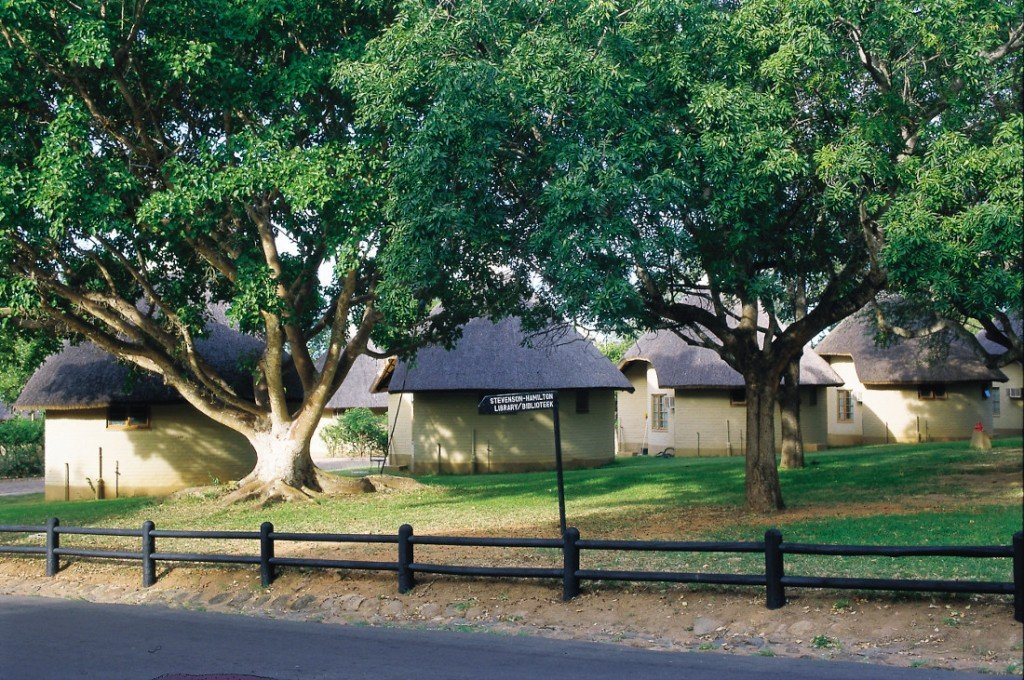 Südafrika Krüger National Park Satara Rest Camp Iwanowskis Reisen - afrika.de
