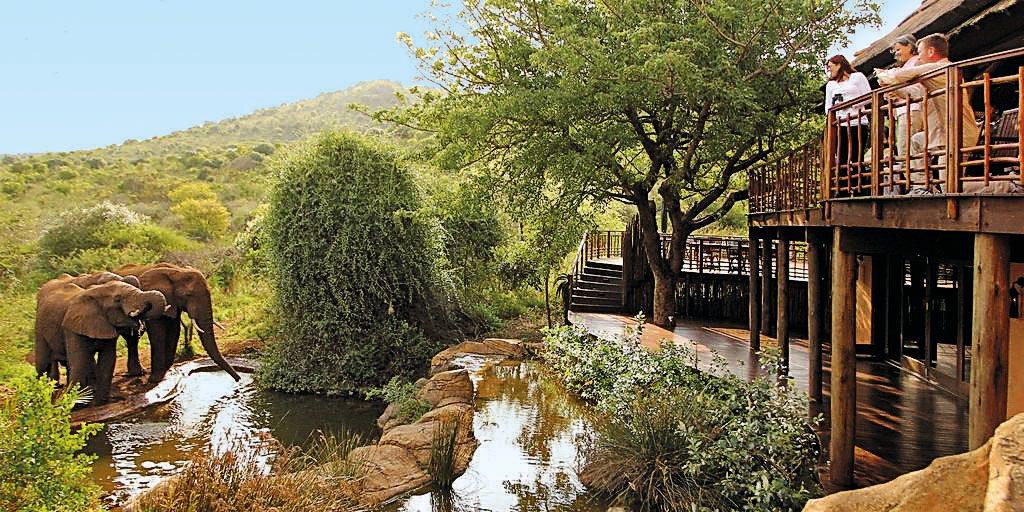 Südafrika Hluhluwe Thanda Main Lodge Iwanowskis Reisen - afrika.de