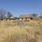 Südafrika Kgalagadi Transfrontier Park Twee Rivieren Camp Iwanowskis Reisen - afrika.de