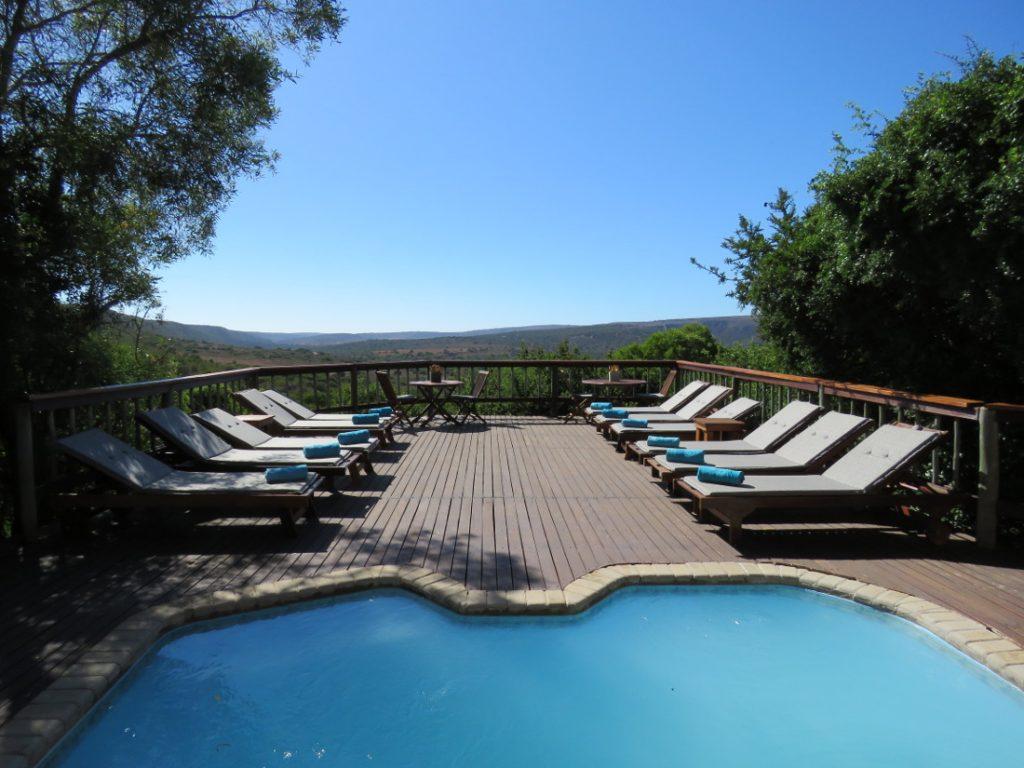 Südafrika Eastern Cape Amakhala Woodbury Lodge Pool Iwanowskis Reisen - afrika.de