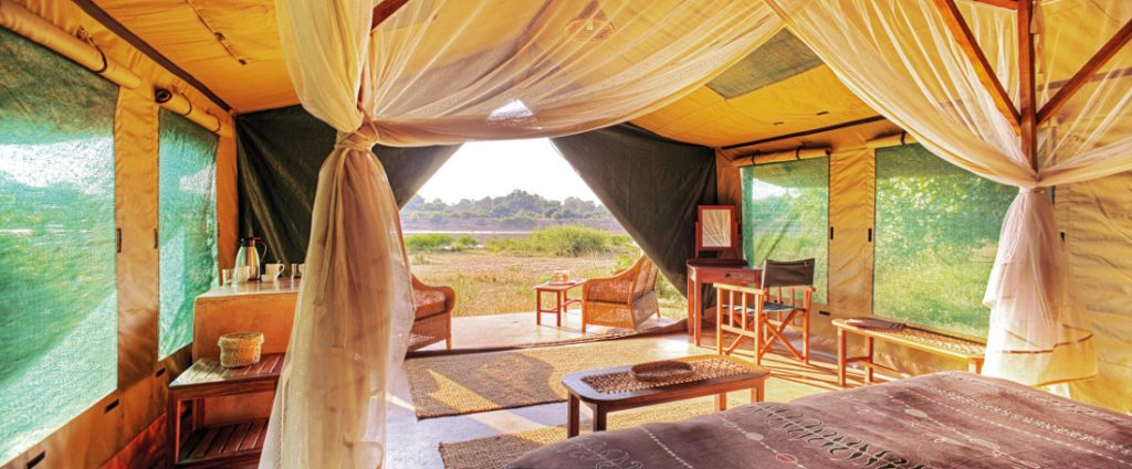 Sambia South Luangwa National Park Flatdogs Camp Luxuszelt Iwanowskis Reisen - afrika.de