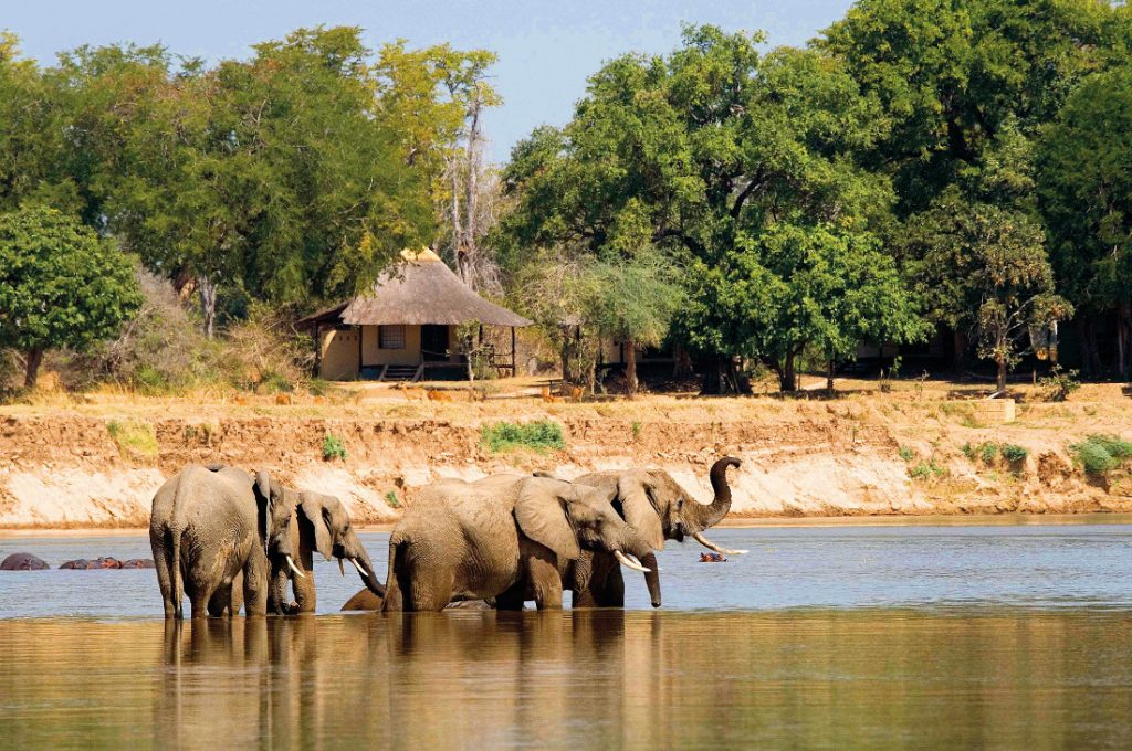 Sambia South Luangwa National Park Nsefu Camp Iwanowskis Reisen - afrika.de