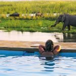 Sambia Lower Zambezi National Park Potato Bush Camp Pool Iwanowskis Reisen - afrika.de