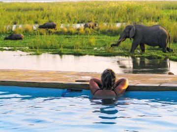 Sambia Lower Zambezi National Park Potato Bush Camp Pool Iwanowskis Reisen - afrika.de